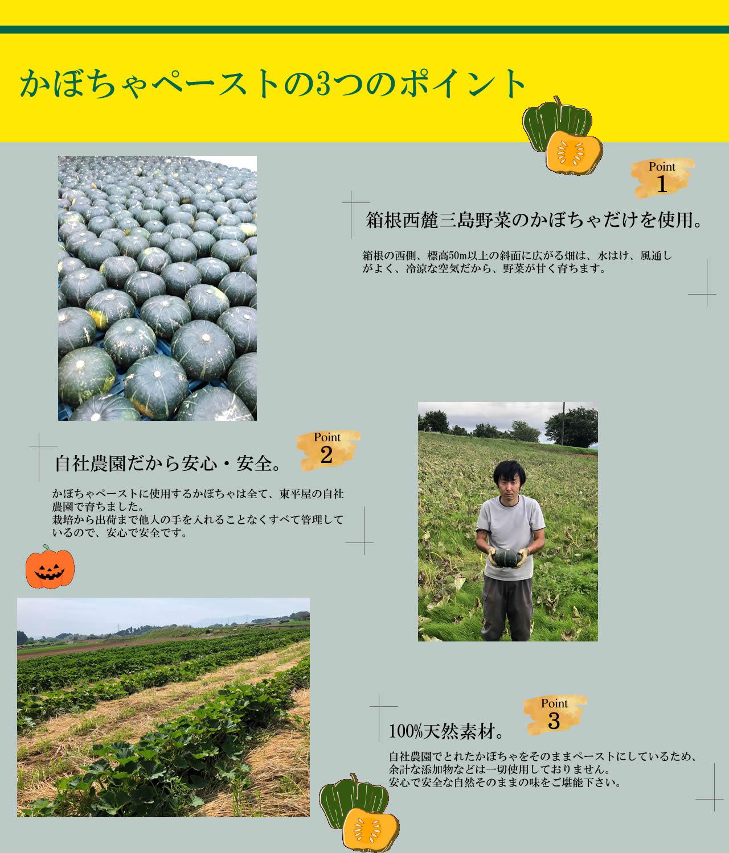1.箱根西麓かぼちゃだけを使用。